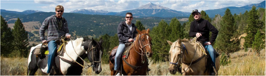 Group horseback riding in yellowstone.
